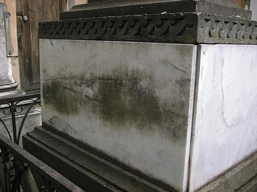 Северная сторона плиты постамента из белого, мелко-, среднезернистого мрамора. Видны налеты биологического происхождения. Фото июля 2002 г.