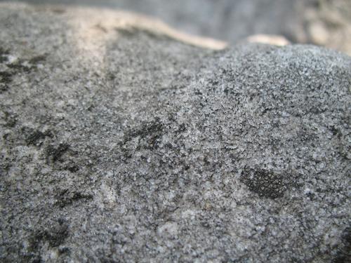 Выкрашивание поверхности мрамора. Микроколонии темноокрашенных грибов вокруг кристаллов мрамора. Слоевища накипных лишайников.