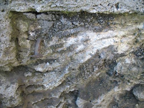 Гипсовая патина на поверхности известняка