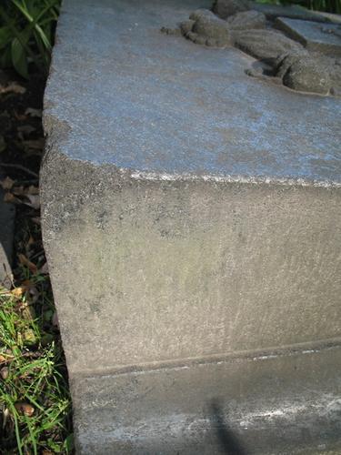 Налет водорослей на вертикальной поверхности памятника. Сколы плиты неизвестного происхождения.