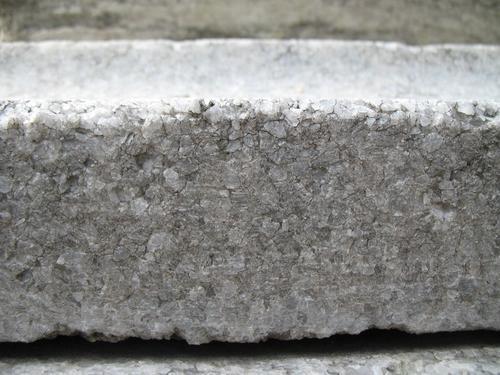 Колонии темноокрашенных грибов на крупнозернистом мраморе