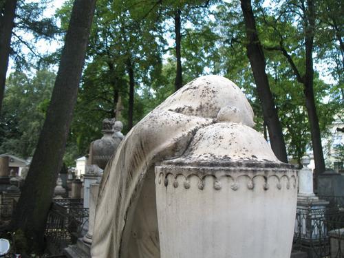 Колонии темноокрашенных грибов на поверхности мрамора
