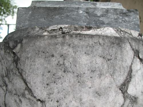 Колонии темноокрашенных грибов на мраморе полуколонны