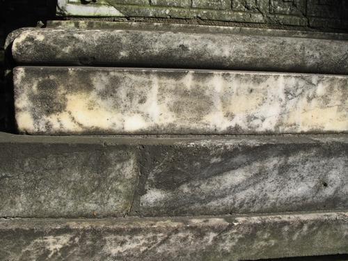 Колонии темноокрашенных грибов, слоевища накипных лишайников на поверхности мрамора