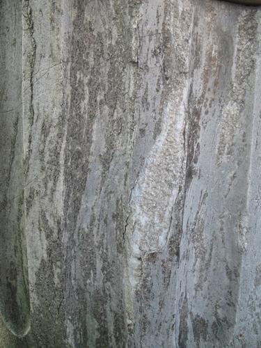 Налет водорослей на мраморе полуколонны. Отслаивание и утрата фрагмента камня.