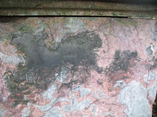 Гипсовая патина на розовом мраморе, налет водорослей.