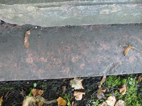 Биопленка на граните рапакиви, горизонтальная поверхность