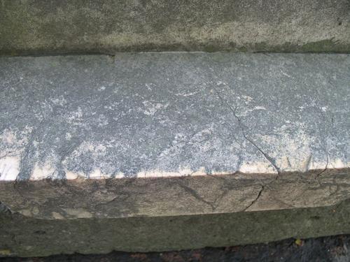 Биопленка с преобладанием колоний темноокрашенных грибов на брекчиевидном мраморе подставки