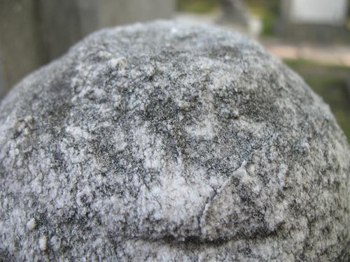 Выкрашивание поверхности мрамора с преобладанием колоний темноокрашенных грибов
