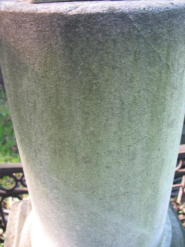 Налет водорослей на поверхности мрамора полуколонны