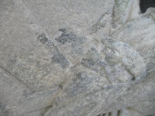 Выкрашивание с преобладанием колоний темноокрашенных грибов на мраморе.