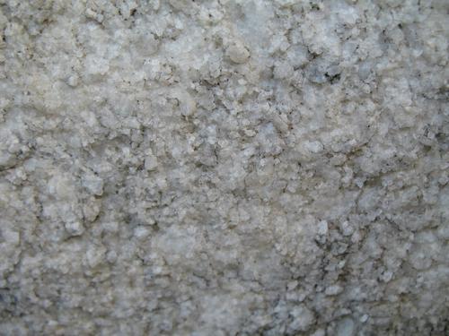 Выкрашивание мрамора с преобладанием колоний темноокрашенных грибов