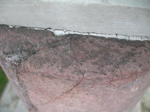 Колонии темноокрашенных грибов на поверхности кварцита (верхняя вертикальная часть полуколонны)