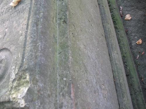 Налет водорослей и выбоины неизвестного происхождения на известняке.