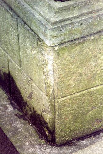 Основание памятника из путиловского известняка. Видно отшелушивание, питтинг, налеты биологического происхождения. Фото ноября 2003 г.