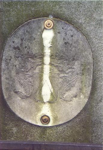 Западный рельеф из белого, мелко-, среднезернистого мрамора. Видны атмосферные грязевые отложения, округлые образования грибов, отшелушивание. Фото ноября 2003 г.