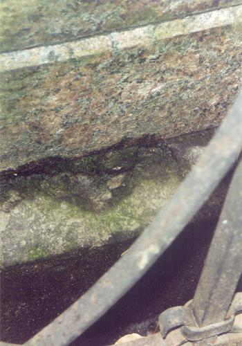 Фрагмент основания из путиловского известняка. Видно отслаивание г/п. Фото ноября 2003 г.