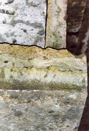 Фрагмент плиты саркофага. Восточная сторона. Видны различные цвета окраски путиловской плиты, развитие питтинга, углублений и впадин из-за выветривания. Фото ноября 2003 г.