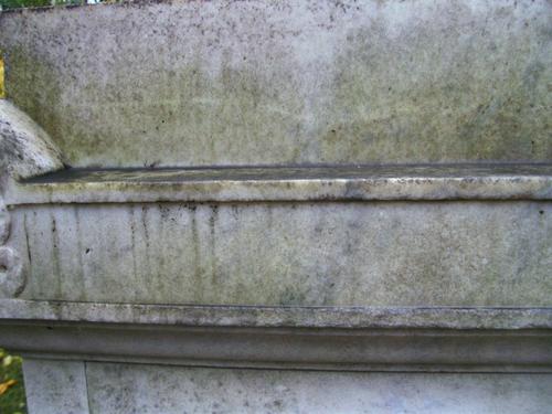Биологические и атмосферные загрязнения на белом мелко- среднезернистом мраморе. Западная сторона. Сентябрь 2010г.