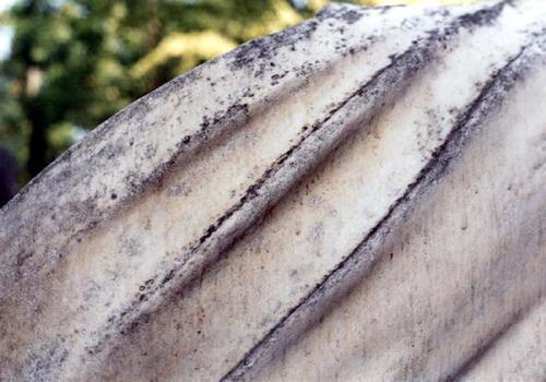 Фрагмент скульптуры плакальщицы. Видны колонии грибов.