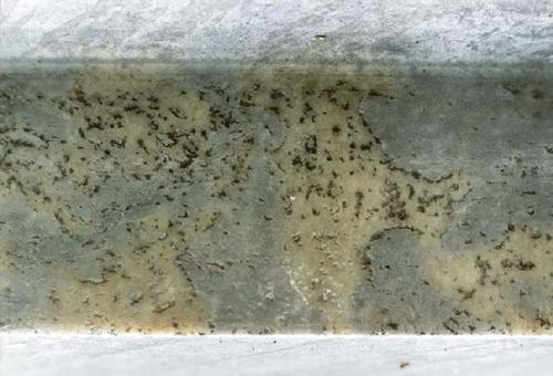 Фрагмент верхней плиты постамента из светло-серого, пестрого, неоднородного, мелко-, среднезернистого мрамора с перламутровым оттенком.