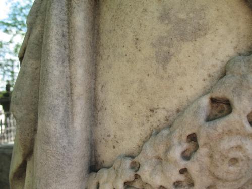 Колонии темноокрашенных грибов в небольшом количестве на поверхности мрамора.