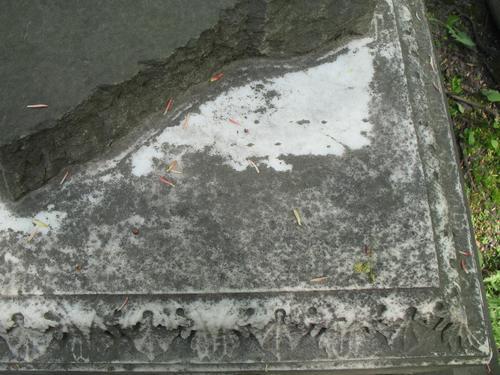 Биопленка на горизонтальной поверхности мраморного саркофага с преобладанием колоний темноокрашенных грибов