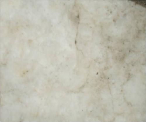 Трещины и колонии грибов: на белом мраморах