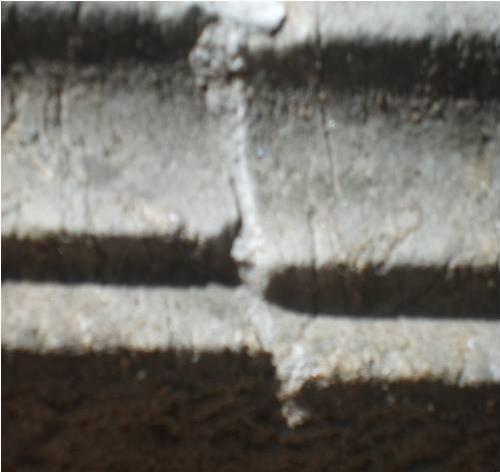 Трещины и колонии грибов: сером мраморах