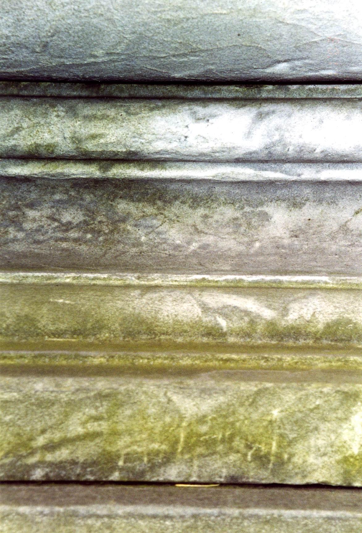 Фрагмент саркофага из светло-серого, мелко-, среднезернистого, однородного мрамора. Северная сторона. Видно сильно проявленное выкрашивание, колонии водорослей.  Фото ноября 2003 г.