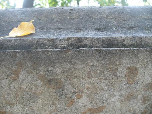 Колонии темноокрашенных грибов на боковой поверхности саркофага