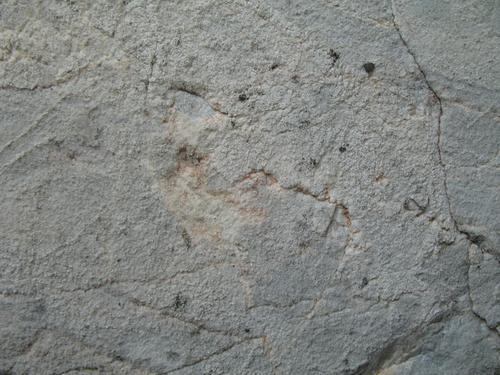 Колонии темноокрашенных грибов на поверхности розового мрамора, трещины, огрубление поверхности. Наружная сторона плиты