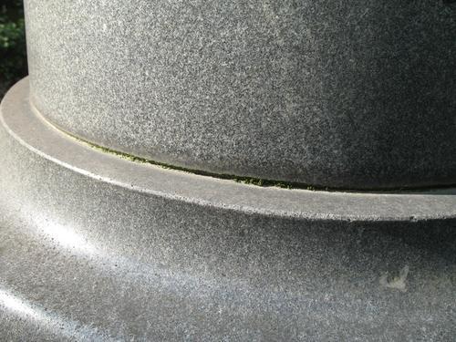 Дерновинки мхов в шве в основании колонны серого гранита