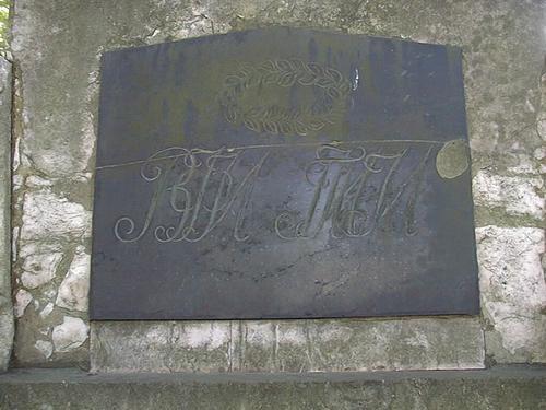 Колонии водорослей на мемориальной доске из черного мрамора.