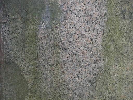 Фрагмент жертвенника из гранита рапакиви. Видны налеты водорослей. Фото июля 2002 г.