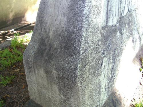 Грязевые отложения и биологический налёт на мраморизованном известняке. Восточная сторона. Май 2011 г.