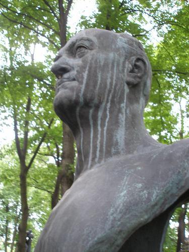 Полосы голубовато-серой патины на лице и шеи с восточной стороны.