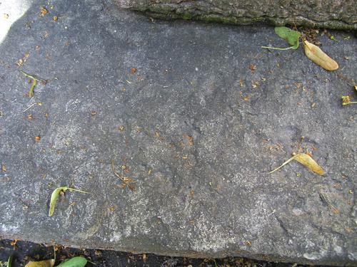 Углубления из-за выветривания на фундаменте из плитчатого известняка. Северная сторона фундамента. Май 2011.