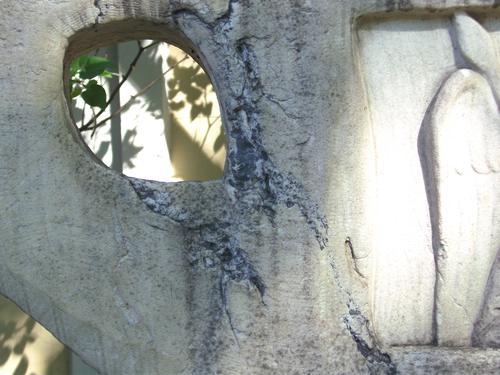 Начало образование первичной гипсовой корки на постаменте из мраморизованого известняка. Восточная сторона постамента. Май 2011.