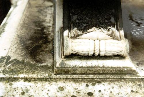 Черная корка, налеты биологического происхождения (водоросли, лишайники) и выкрашивание мрамора на горизонтальной поверхности постамента и фигурной ножке саркофага.