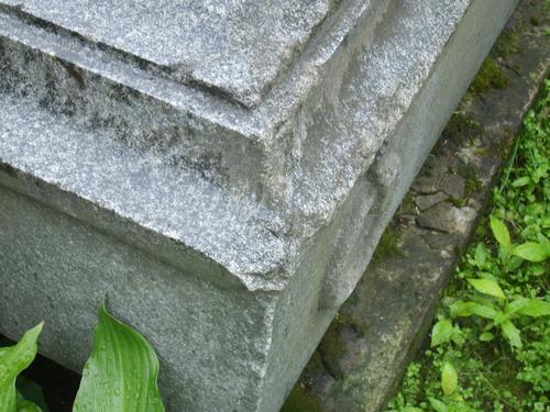Выбоины и сколы неизвестного происхождения, огрубление поверхности из-за выкрашивания, атмосферные грязевые отложения, биологический налет (грибы, водоросли).