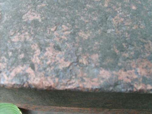 водоросли на розовом граните