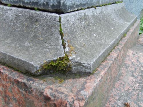 Сколы, трещины, грязевой налет и биологические наслоения (мхи, грибы, лишайники) на сером мелкозернистом известняке; мелкие сколы на сером граните