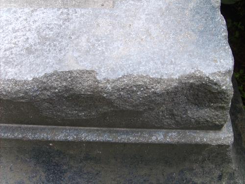 Выбоины и сколы неизвестного происхождения и биологический налет (грибы) на породе силикатного состава.