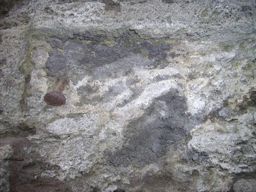 Первичная и вторичная гипсовые корки  и  их отслаивание вместе с горной породой, колония микромицетов (а,б), водоросли (б)
