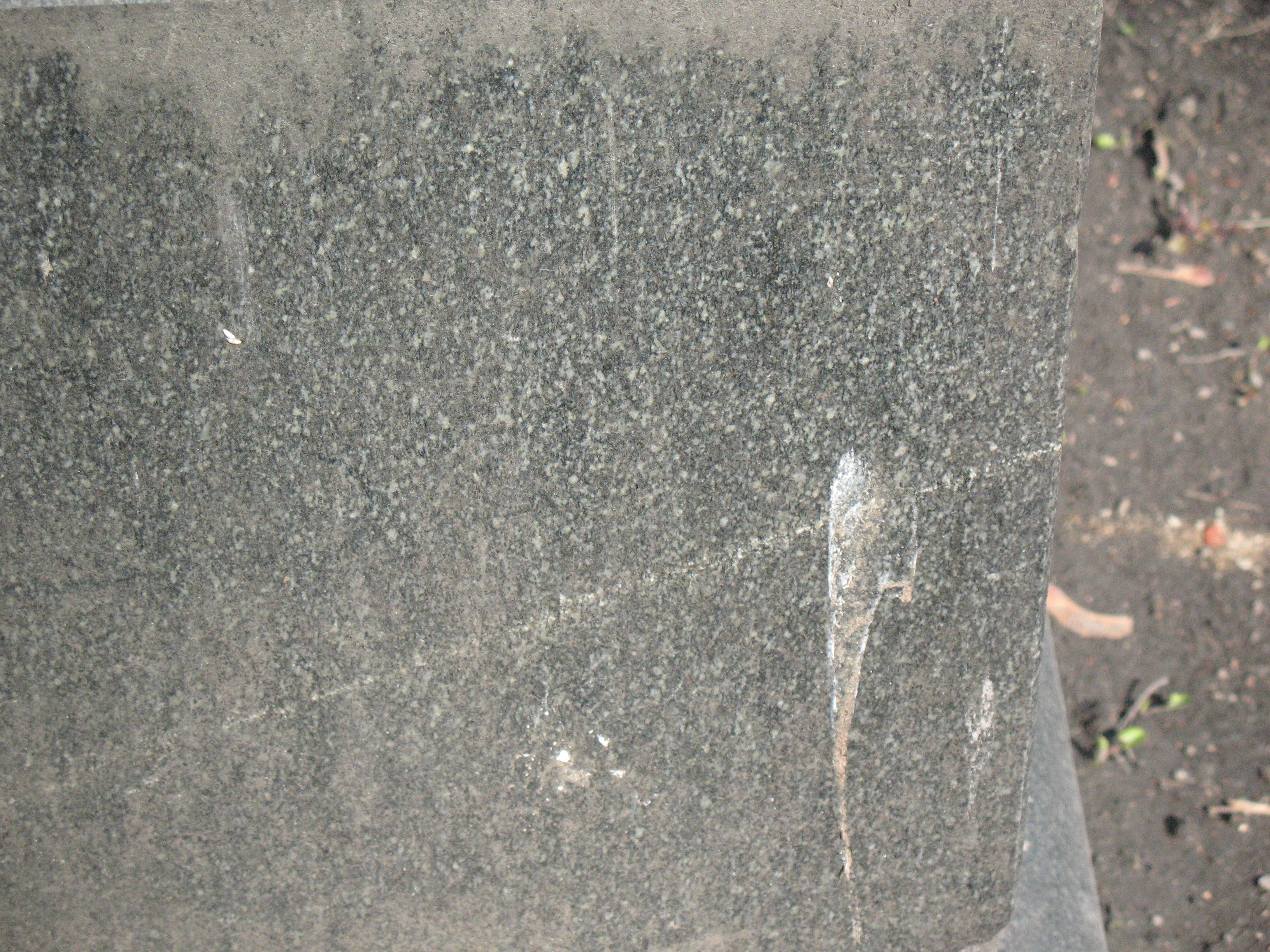 Помет птицы на сером граните