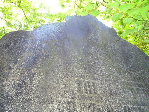 Биологические наслоения и сквозная трещина на постаменте из серого мелко-среднезернистого гнейсо-гранита. Западная сторона постамента. Май 2011.