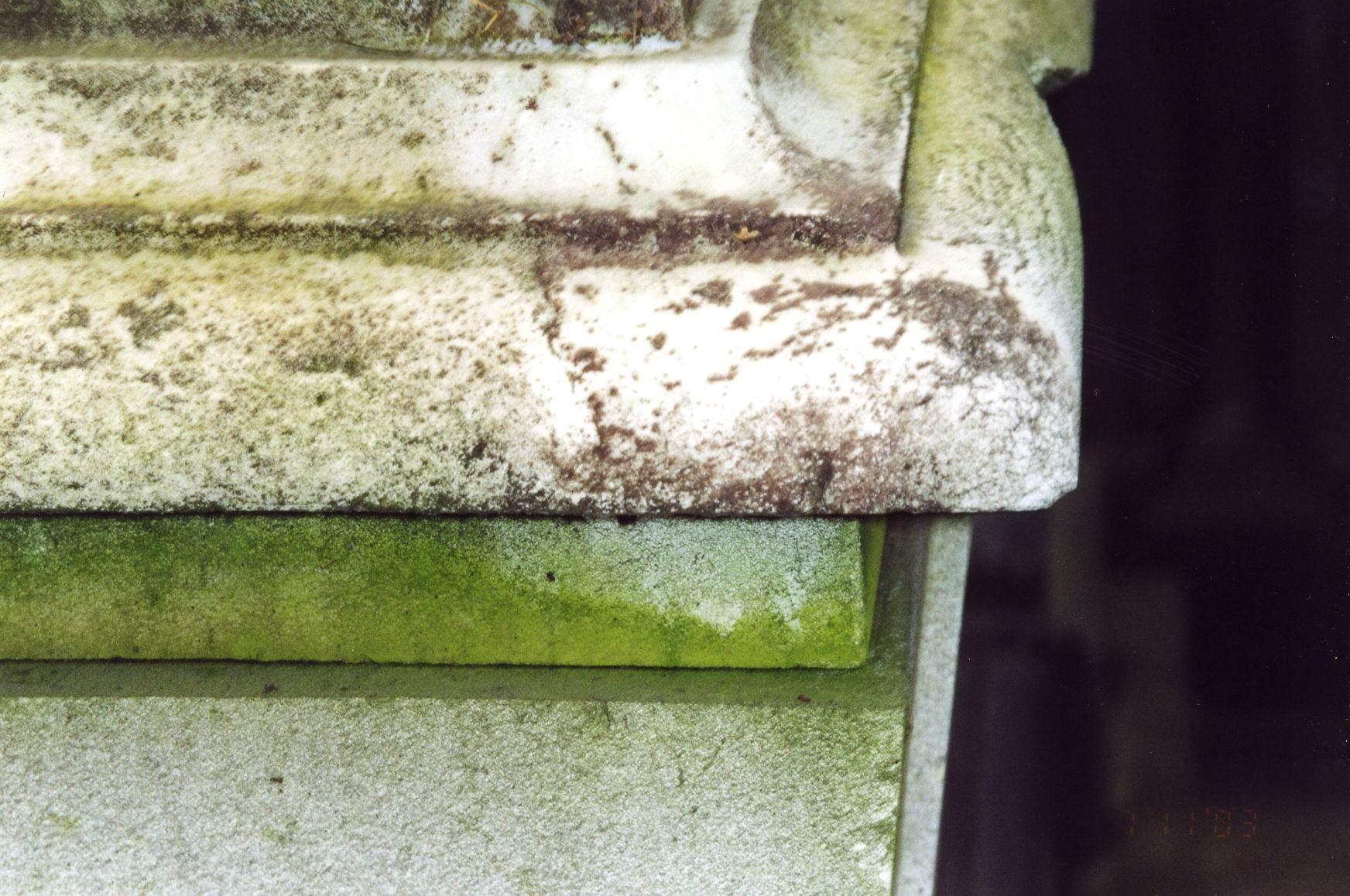 Фрагмент крышки саркофага. Северная сторона. Видно сильно проявленное отшелушивание, налет из атмосферных грязевых отложений и налетов биологического происхождения. Фото ноября 2003 г.