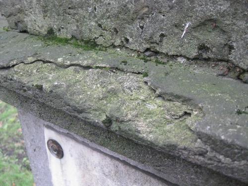 Налет водорослей, лишайников на постаменте (восточная сторона)