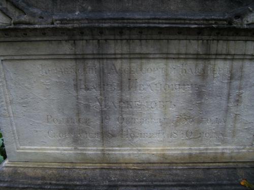 Грязевые наслоения, выкрашивание и отшелушивние на саркофаге из  белого однородного мрамора. Восточная сторона саркофага. Сентябрь 2011.